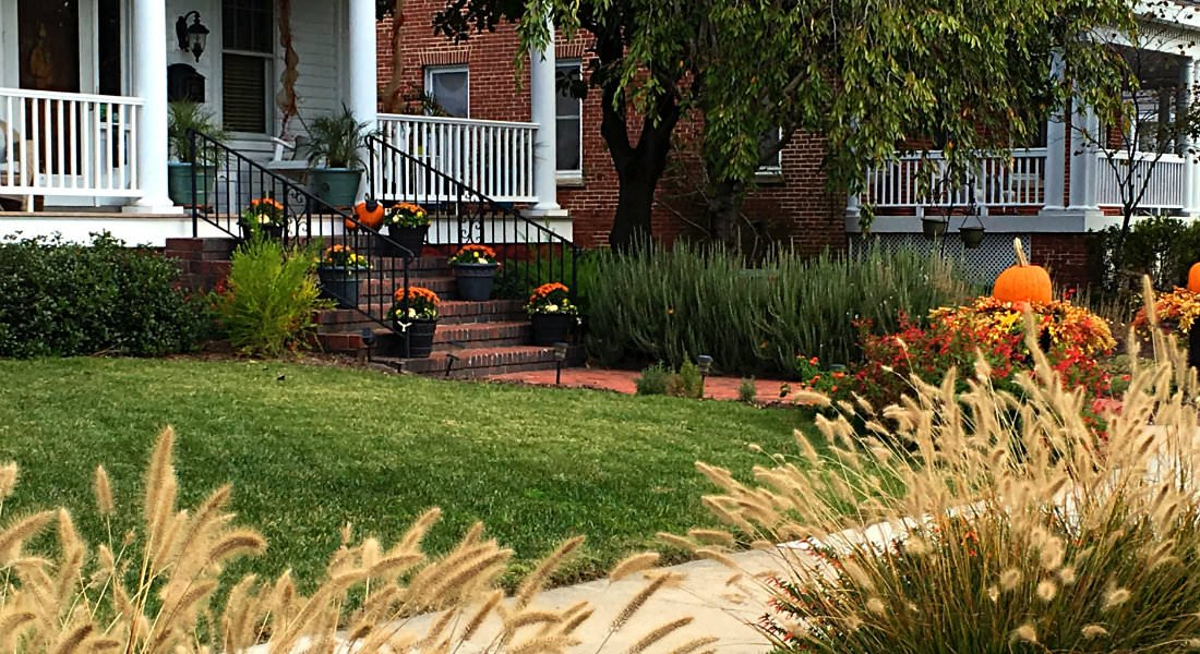 Decorative grasses and potted orange and yellow flowers line a brick walkway and staircase.