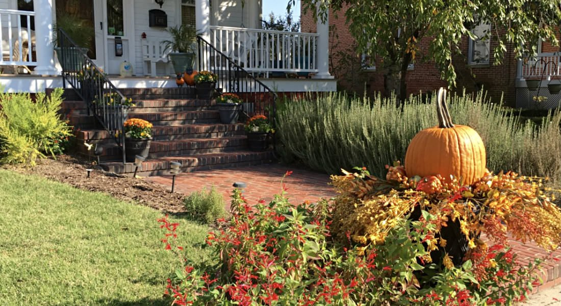 A large, orange pumpkin sits amongst decorative leaves near a red brick walkway and stairs.
