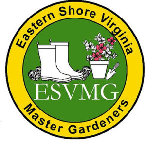 Eastern Shore of Virginia Master Gardener logo