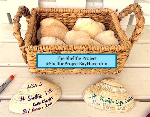 Shellfie basket