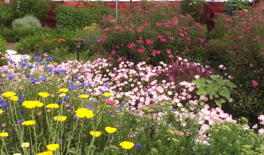 cut_flower_garden_web