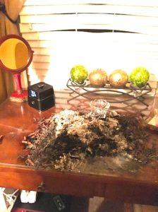 fire ash mound