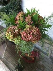 Hydrangeas and herbs